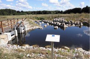 Fischaufstiegsanlage bei Kirch Rosin